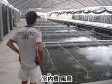 B_China_002